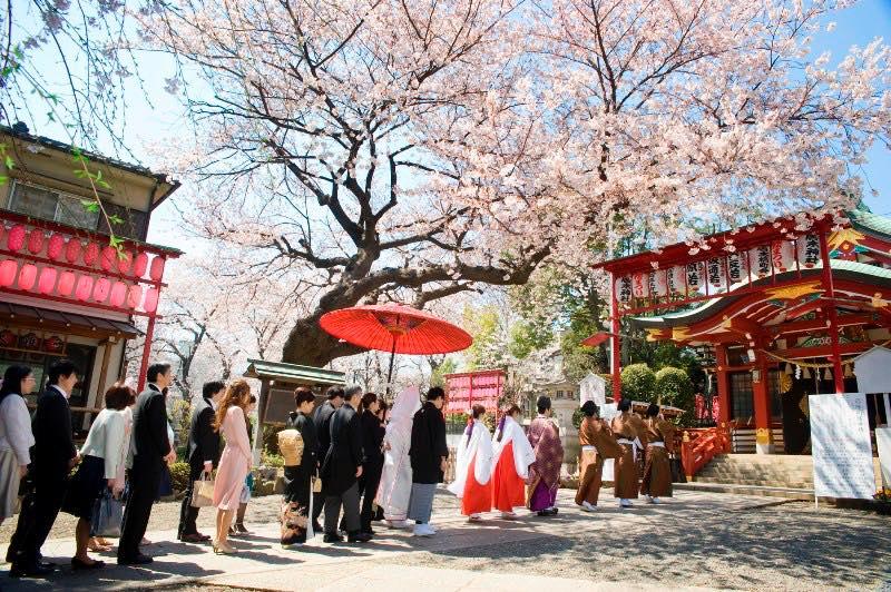 Cuore Wedding【Destination Weddings in Japan】